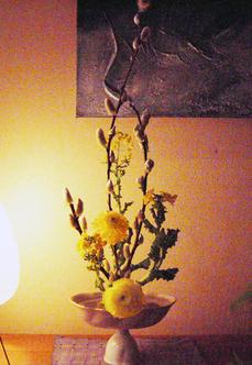館山の菜の花.jpg